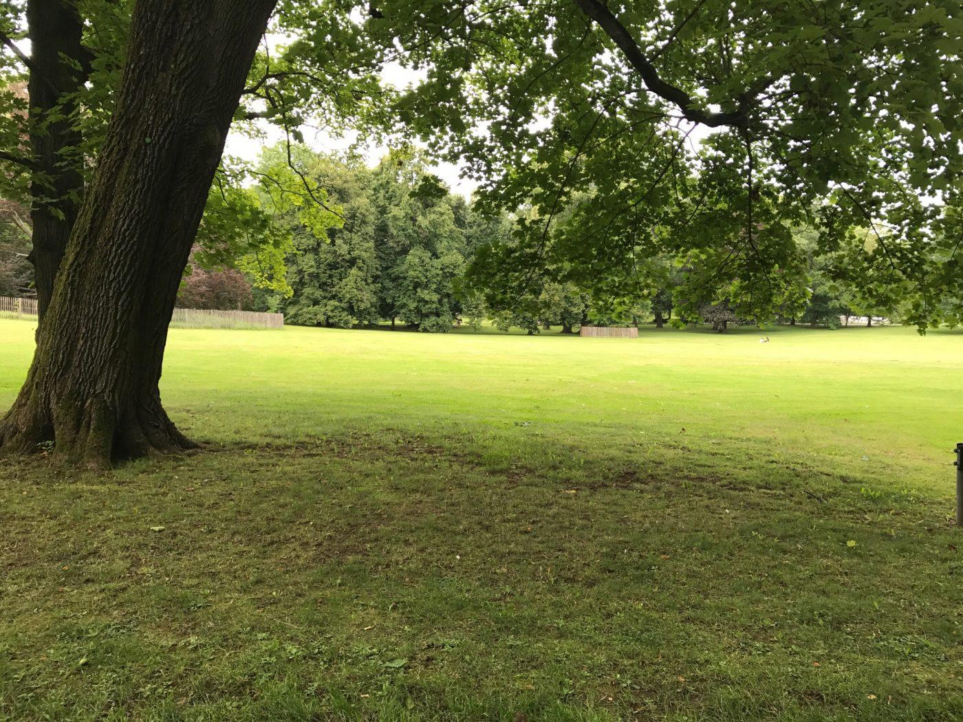Sitzen und warten im Park
