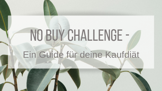No Buy Challenge – Ein Guide für deine Kaufdiät