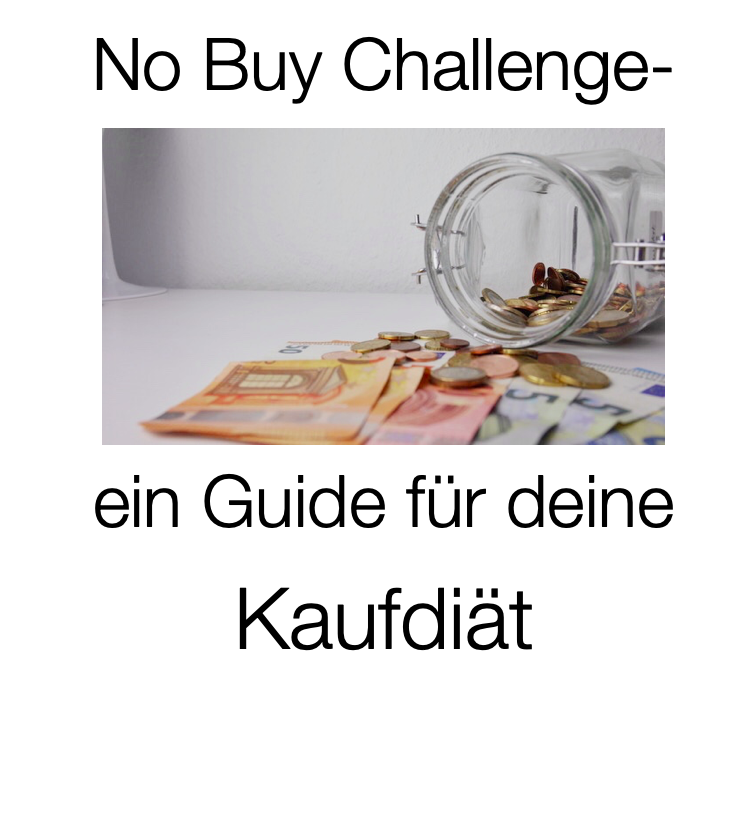 No Buy Challenge Guide