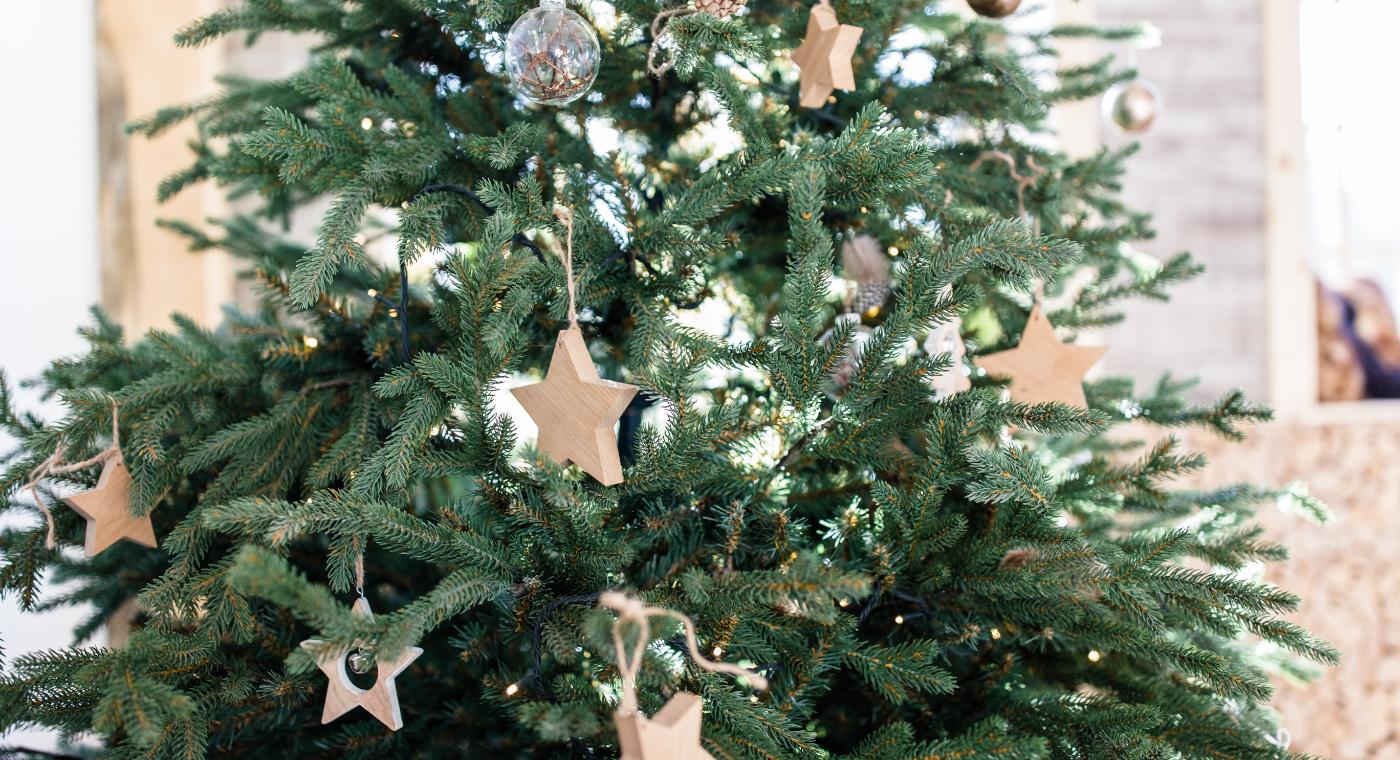 Weihnachtsbaum- persönlicher Jahresrückblick 2020