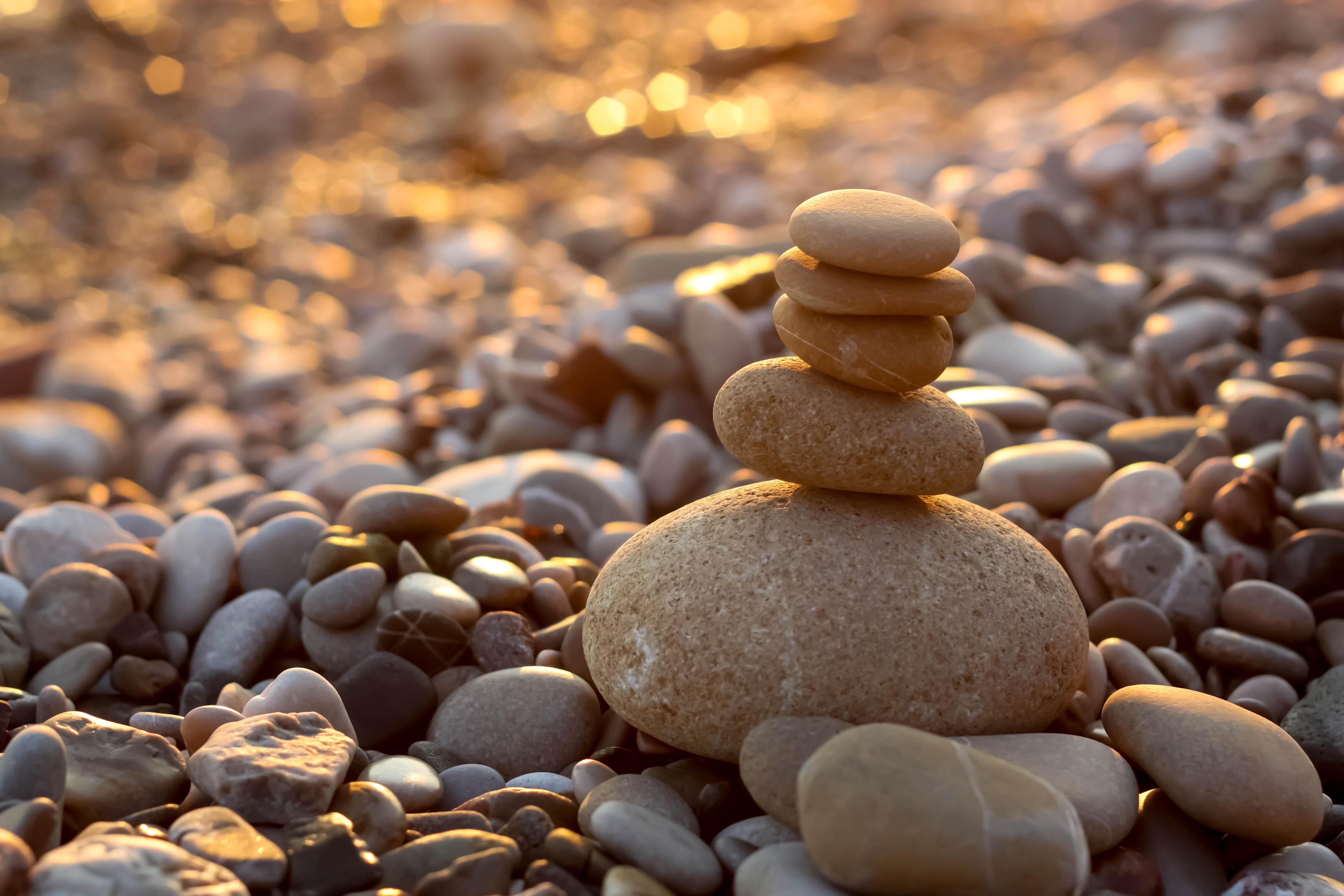 Die japanische Kultur des Aufräumens und der Ordnung- von Zen bis Marie Kondo