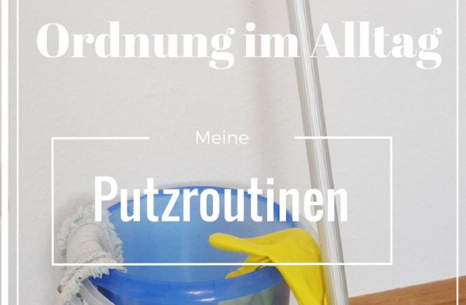Putzroutinen- Eimer und Wischmopp