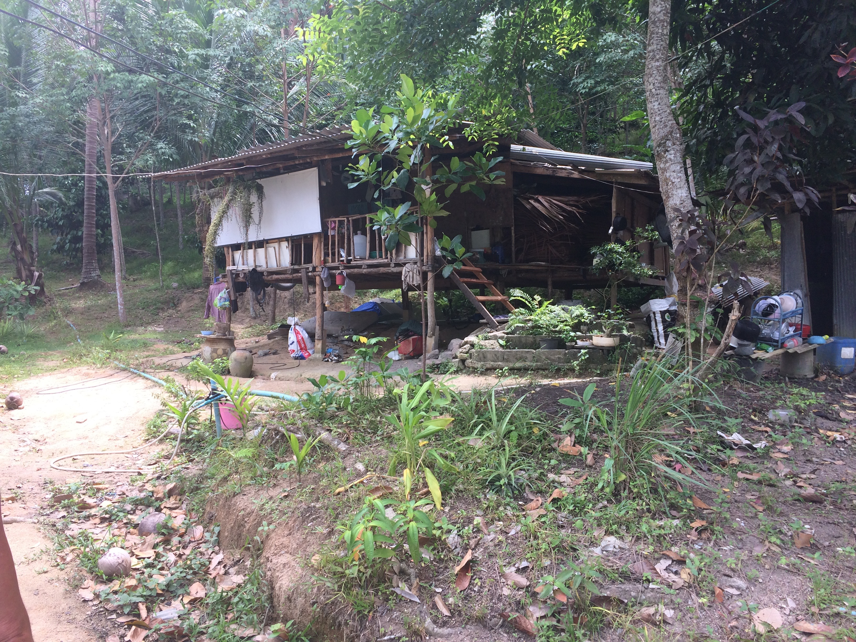 Kho Phangan- Eine Hütte im Nirgendwo