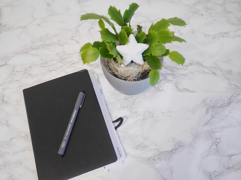 Produktivität steigern durch digitalen Minimalismus- Buch analog